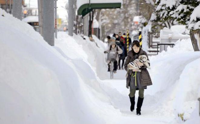У Хоккайдо найсильніший снігопад за останні 50 років (ФОТО,ВІДЕО)