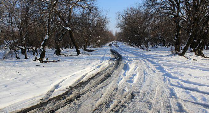 В Україну прийде рання, але холодна весна