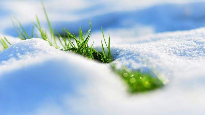 1560_nature___seasons___spring_grass_makes_its_way_from_under_the_white_snow_099393_.jpg (25.86 Kb)