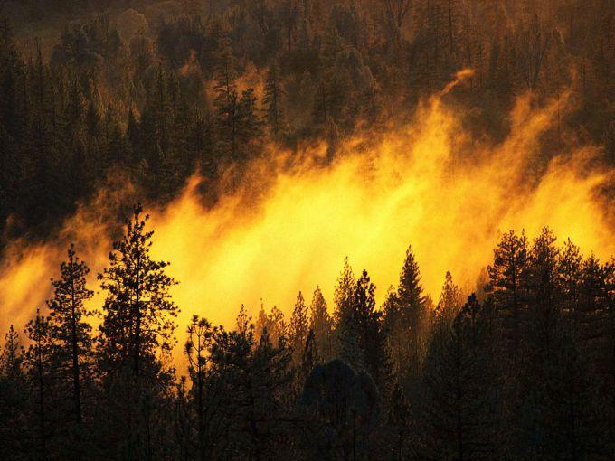 Пожежа в зоні Чорнобиля (ВІДЕО)