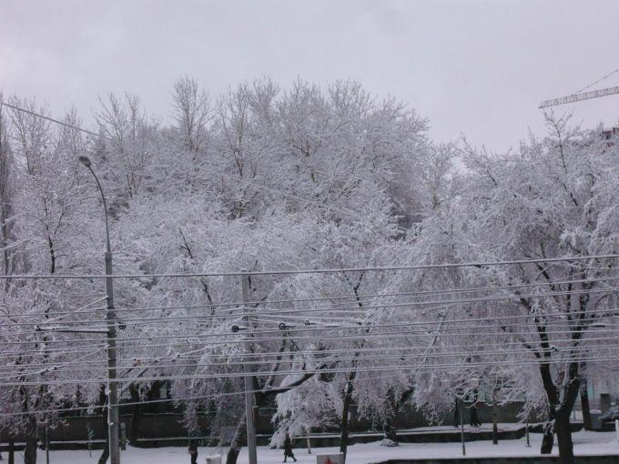У Польщі снігопади і вітри залишили тисячі будинків без світла