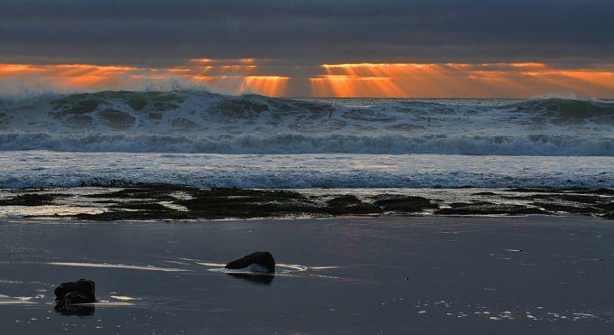 У Тихому океані зародився потужний тайфун Дельфін