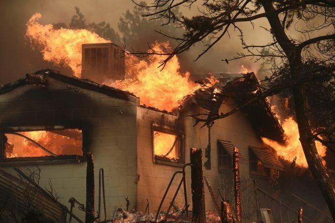 США охопили великі лісові пожежі (ВІДЕО)