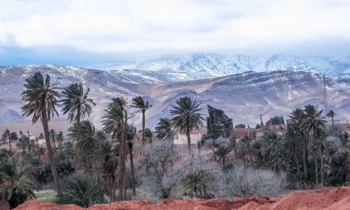 Засніжена пустеля Сахара вражає красою (ФОТО)