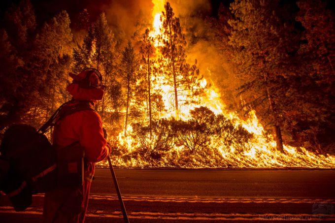 Потужні лісові пожежі охопили Індію