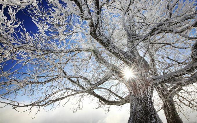 Народні прикмети про погоду 28 грудня