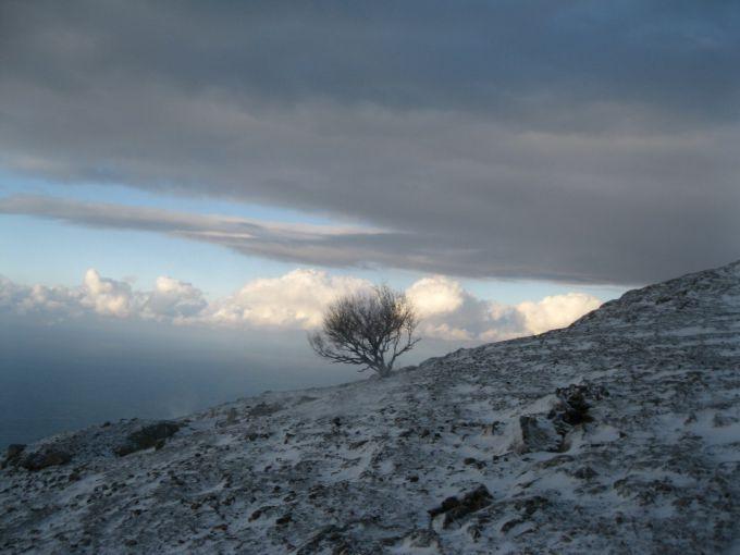 Дощ зі снігом пройде в Україні 2 грудня