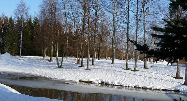 6 березня в Україні переважатиме холодна погода