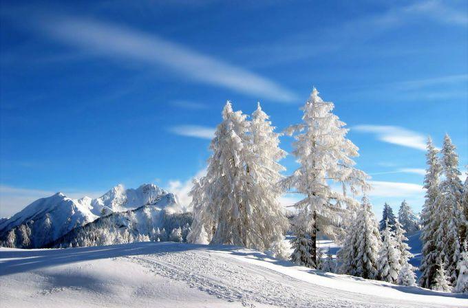 Народні прикмети про погоду 11 січня