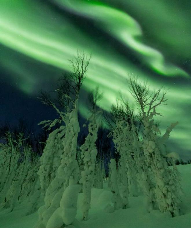 Північне сяйво звабило туристів у Швеції (ВІДЕО)