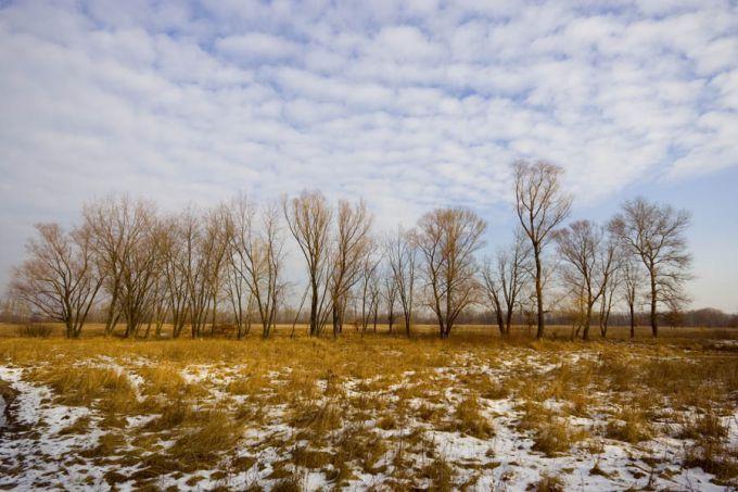 Лютий в Україні починається з тепла