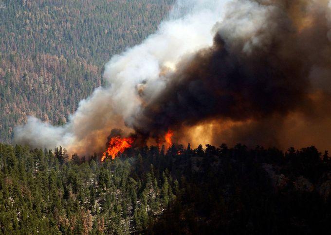 В Росії площа лісових пожеж далі збільшується