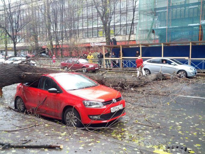 Штормовий вітер додав роботи рятувальникам Естонії