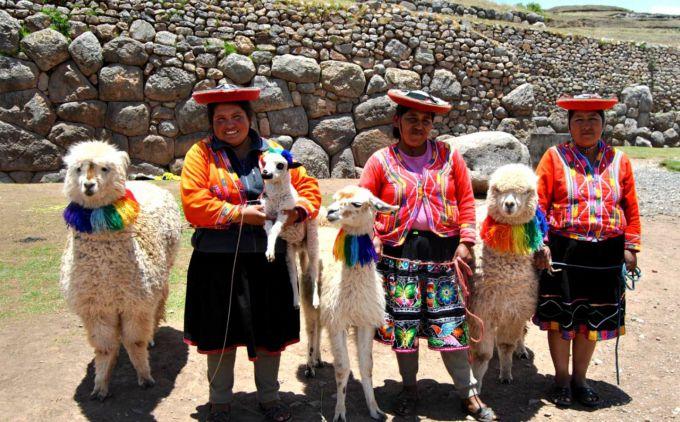 У Перу аномальні морози вбили 180 000 альпак