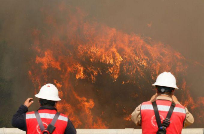 Троє пожежників загинули в лісових пожежах в Чилі (ВІДЕО)