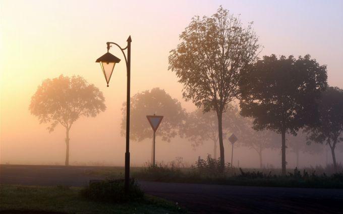 14-15 лютого в Україні очікуються тумани і тепла погода