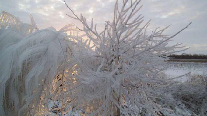 Народні прикмети про погоду 12 січня